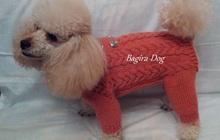 Одежда для собак и кошек Bagira-Dog