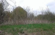 Продам земельный участок дер, Каблучки озерский район