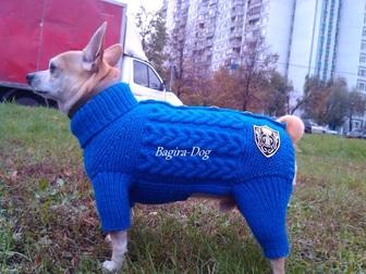 Скачать бесплатно изображение Одежда для собак Одежда для собак и кошек Bagira-Dog 18275192 в Москве