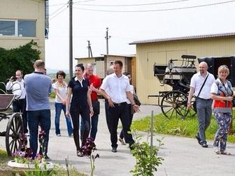 Новое фотографию  Конный клуб в Старочеркасске предлагает 35130775 в Ростове-на-Дону