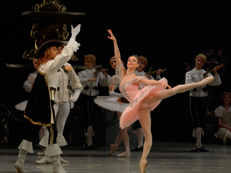 Просмотреть фото  Вечер академии русского балета 35782683 в Москве