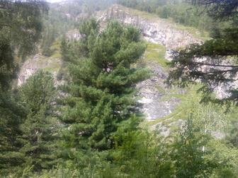 Уникальное foto Земельные участки Продам земельный участок под ИЖС Республика Алтай ,с, Чемал  37380504 в Новосибирске
