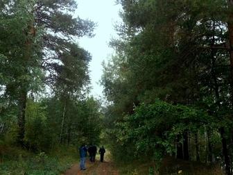 Скачать фото Земельные участки Дачные участки на берегу большого озера  52356328 в Москве