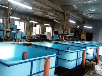 Новое foto Разное Рыбная ферма на 2 тонны Сельское хозяйство/ рыбоводство 72586692 в Белгороде