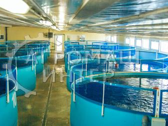 Увидеть foto Разное Рыбная ферма на 2 тонны Сельское хозяйство/ рыбоводство 72586692 в Белгороде