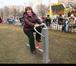 Фото в Строительство и ремонт Другие строительные услуги Одна из главных проблем жителей городов – в Москве 13500