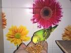 Фотография в   Продаю волнистых попугаев своего разведения. в Мытищи 1500