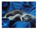 Изображение в Хобби и увлечения Коллекционирование продам картину на холсте, 40*50 см, в ра в Нижнем Новгороде 5000