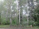 Фотография в Загородная недвижимость Коттеджные поселки Участки 21 сотка в сосновом бору , лес на в Нижнем Новгороде 210000