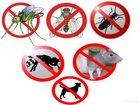 Фотография в   Полное уничтожение насекомых и грызунов с в Нижнем Новгороде 0