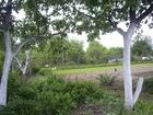Новое фотографию Сады Продаю сад 6 соток поселок 1-ое Мая 66373884 в Нижнем Новгороде