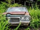 Увидеть foto Разное Сдать авто на металлолом с вывозом! 66432609 в Нижнем Новгороде