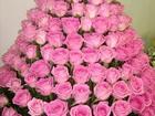 Увидеть изображение Организация праздников Организация праздников, Масленица, 34605509 в Ногинске