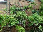 Продается домовладение с земельным участком в садовом товари