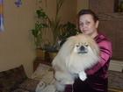 Смотреть foto Продажа собак, щенков Услуги опытного инструктора по вязке собак, 37729039 в Новосибирске