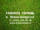 Изображение в   Садовая помощь в Новосибирске! Предлагаем в Новосибирске 300