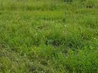 Фотография в   Срочно продам участок 5. 02 сотки в коттеджном в Новосибирске 0