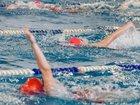 Увидеть foto Спортивные школы и секции Обучение плаванию детей и взрослых (левый берег) 53752313 в Новосибирске