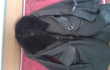 Продам куртку-сюртук