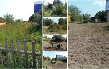 Расчистка запущенных, заброшенных земельных участков
