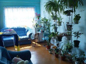 Увидеть foto  Тогучин! Отдельностоящий дом! 32800268 в Новосибирске
