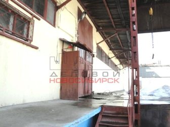 Смотреть foto Коммерческая недвижимость Сдача в аренду склада 862 кв. м. 33226371 в Новосибирске