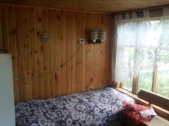 Просмотреть фото  Продам дачу, остров Кудряш, СНТ Волна 37188836 в Новосибирске