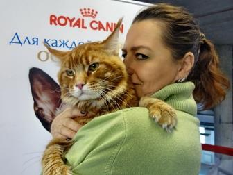 Фотки  смотреть в Новосибирске