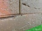 Браер - баварская кладка с песком