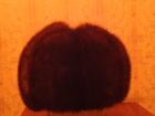 Смотреть изображение  Норковая мужская шапка,полная,состояние отличное 37790820 в Омске