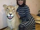 Увидеть foto  продаю чучела животных , по разумной цене , 59956252 в Омске