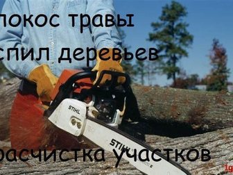 Скачать бесплатно фотографию Разные услуги Расчистка дачных участков, демонтаж строений 33492788 в Орехово-Зуево