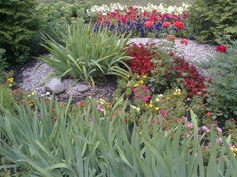 Новое изображение Ландшафтный дизайн Цветы постоянноцветущие, Клумбы и цветники, 32484406 в Пензе