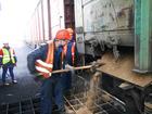 Изображение в   Персонал для Вашего Бизнеса: рабочие; разнорабочие; в Перми 0