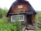 Скачать изображение Сады Продам дачу в Дачном кооперативе (Горловская 45аа) на Южном СРОЧНО! 39460365 в Перми