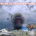 22, 11, 19 ж/д тур Тепло Тюмени+гор, источник/ЦО037