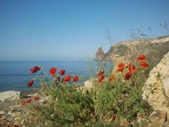 Скачать бесплатно изображение  Отдых на море 37352159 в Перми