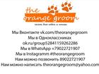 Увидеть изображение Услуги для животных The orange groom, стрижка собак и кошек, 33675805 в Первоуральске
