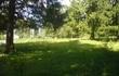 Продаю земельный участок 15 соток с лесными