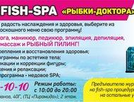 Массаж,ногтевой сервис,маникюр, рыбный пилинг новый спа- салон кабинет массажа в
