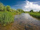 Просмотреть фото Другие строительные услуги земельные работы, расчистка водоемов, озер и рек 32459171 в Рязани