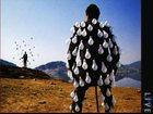 Уникальное фотографию Отдам даром - приму в дар Продам винил Pink Floyd 33998700 в Рязани