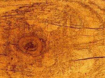 Увидеть фото Кухонная мебель Столешница Старая сосна 33180958 в Ростове-на-Дону