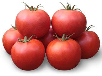 Скачать фото Разное Семена томата KS 835 F1 фирмы Китано 36626830 в Ростове-на-Дону