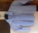 Фото в   Продаю голубую классическую рубашку Imperator в Ростове-на-Дону 400