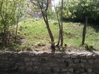 Фото в Недвижимость Земельные участки Участок на берегу Волги ул. Л. Шмидта 1, в Самаре 1500000