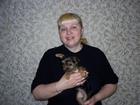 Фото в Собаки и щенки Лечение собак Приму роды у собак любой сложности! Даже в Санкт-Петербурге 1500