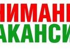 Новое изображение Резюме и Вакансии Работа в Спб и ЛО для студентов от 400р в час 33839851 в Санкт-Петербурге