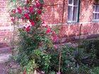Фотография в Недвижимость Иногородний обмен  Срочно меняю дом в ростовской области на в Санкт-Петербурге 3000000