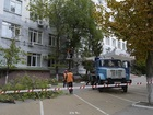 Скачать бесплатно фото Ландшафтный дизайн Спиливание деревьев 35575047 в Санкт-Петербурге